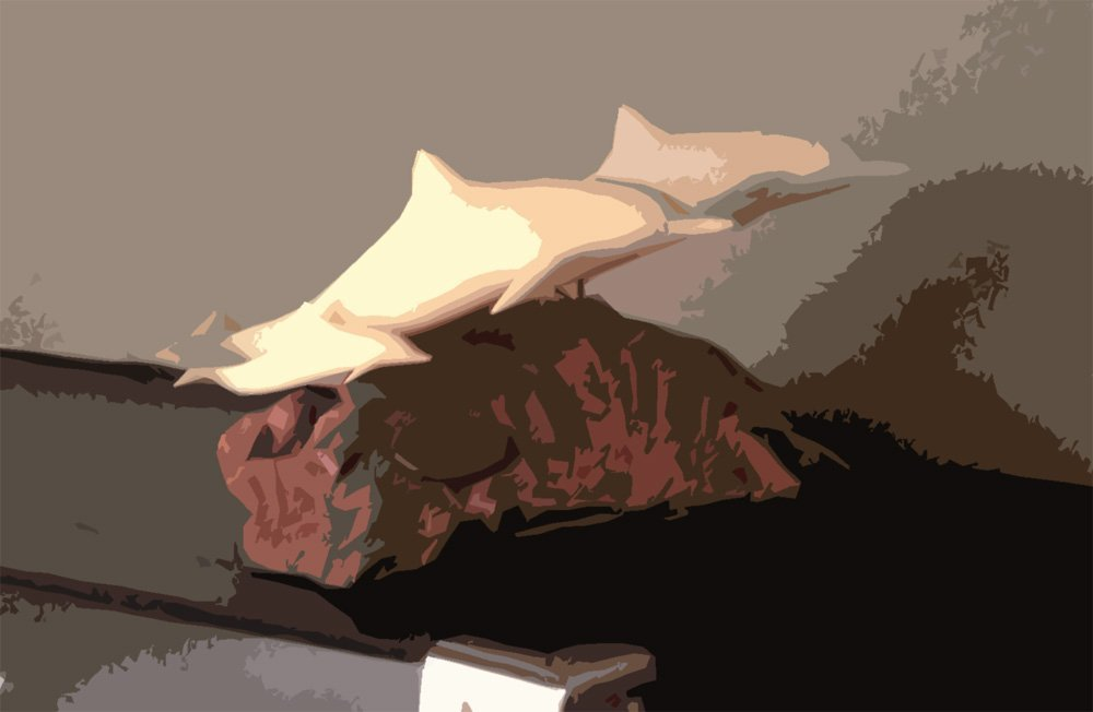 Here I took a picture of the still life then used the Photoshop cutout filter to simplify the block of wood that the dolphins are mounted to.