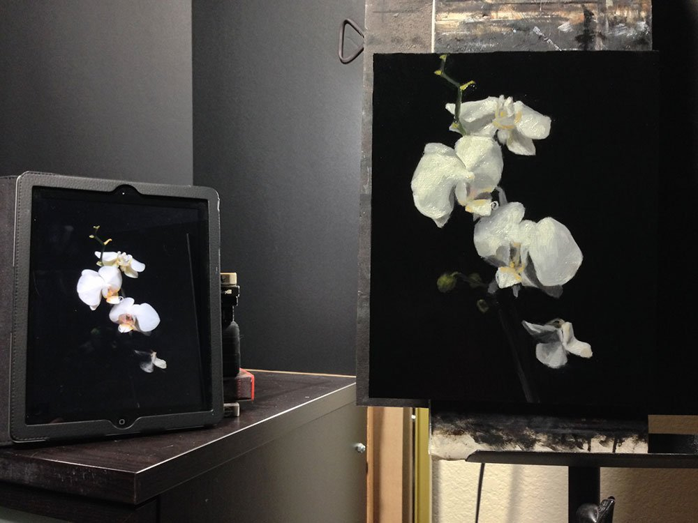 White Orchid Painting: setup