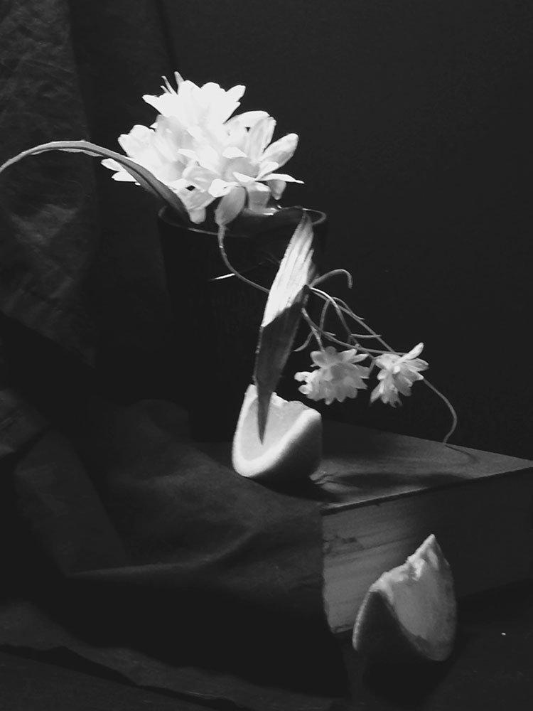 Flowers and orange, black and white photo