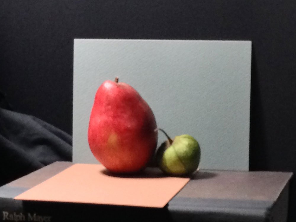 Failed Red Pear Painting, subject photo