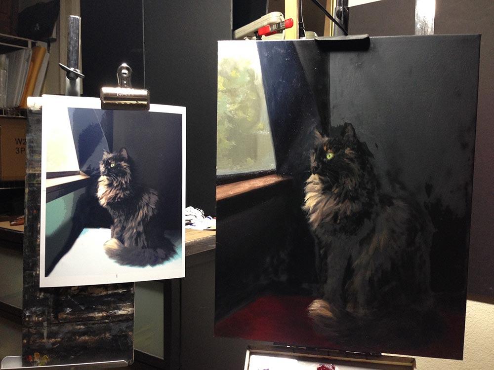 Winnie Cat Portrait Session 5 , setup