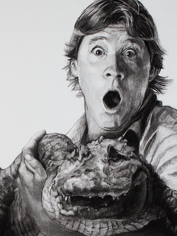 Steve Irwin Drawing detail